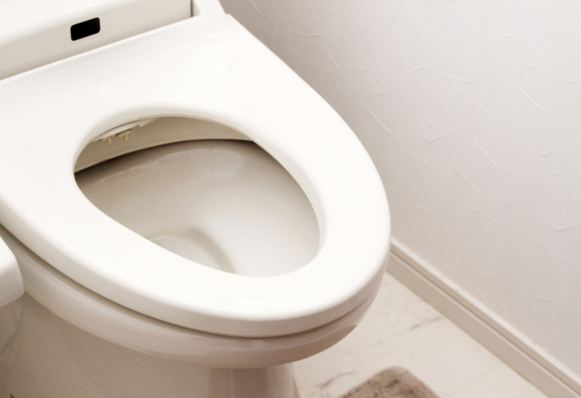 トイレが詰まる前兆